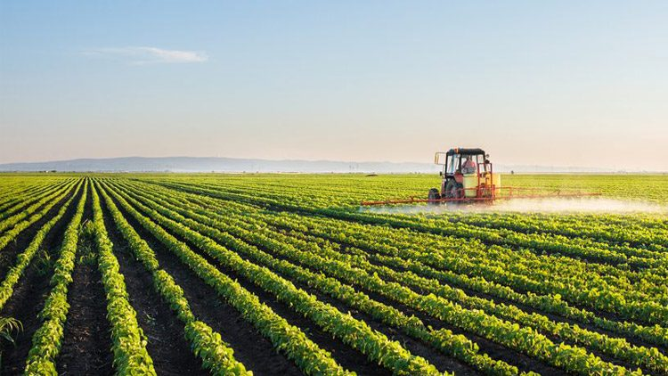 Indian Agriculture Industry : Best Resource to Indians People
