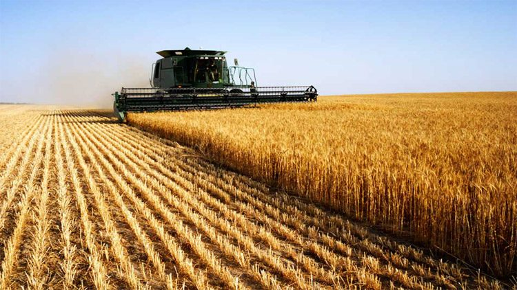 Different Types of Commodities of Indian Agricultural Industry